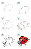 Educational Page For Kids. How To Draw Step By Step An Insect Ladybird. Back To School. Developing C poster