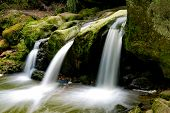 Idyllic Waterfall In Lush Green Summer Forest In Luxembourg poster