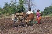 Rural Life In India