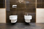 Luxury bathroom closeup - the water-closet and bidet.