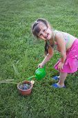 Little Girl Watering The Plants
