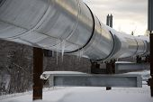 Icicles On The Alaskan Pipeline