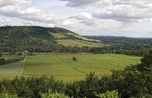 North Downs. Dorking. Surrey. Inglaterra