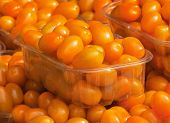 Orange Coloured Cherry Tomatoes For Sale