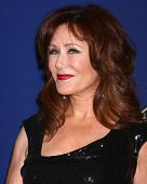 LOS ANGELES - 10 de FEB: Mary McDonnell en el 2013 American Society of Cinematographers premiado en la
