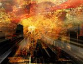Luz solar de NYC