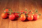 Cherry tomatoes, Solanum lycopersicum