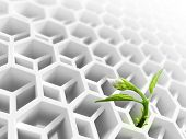 Little Green Flower Sprout  Grows Through Abstract White Modern Honeycomb Structure