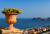Typical View Of Sicily