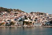 Skopelos Harbour