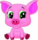 pic of baby pig  - Vector illustration of Cute baby pig cartoon - JPG