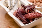 picture of sucker-fish  - Octopus with suckers as appetizer in a white bowl - JPG