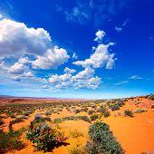 Arizona desert near Colorado river USA orange soil and blue sky