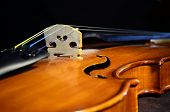 Violin Bridge-angle