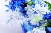 Blue bouquet of first spring flowers closeup