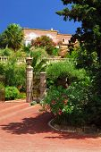 Lush garden in front of a villa on French Riviera