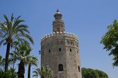the golden tower.torre del oro, Spain