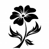 Black silhouette of flower. Vector illustration.