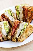 Toasted club sandwich sliced on a plate