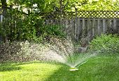 Watering backyard green grass lawn with sprinkler