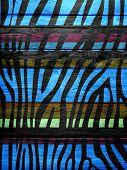Wood Vintage Retro Colorful Zebra Print Background