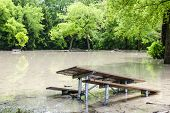 Picnic area of Sunnybrook park in Toronto flooded after heavy rains