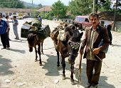 TROPOJE, KOSOVO, 19 JULY 1998 -- A Kosovo Liberation Army (UCK) smuggler brings weapons across the b