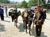 TROPOJE, KOSOVO, 19 JULY 1998 - A Kosovo Liberation Army (UCK) smuggler brings weapons across the bo