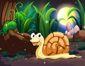 Illustration of a snail in the forest