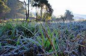 Frozen Ground At Angkang