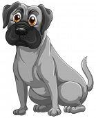 Illustration of a closeup bulldog