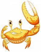 Illustration of a close up crab