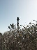 Bodie Lighthouse and swamp grass, Outer Banks, North Carolina