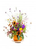 Wild flowers bouquet in carved pumpkin vase over white background