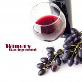 Glass Of Red Wine With Bunch Of Grapes  And Bottle Isolated On White Background