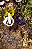 Natural remedy and mortar