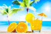 Orange cocktail drink