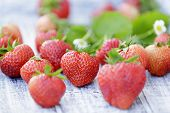 Strawberry - freshly picked strawberries