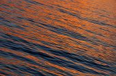 Golden Sunset On The Sea