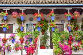 Typical old Terrace (balcony) decorated Pink and Red Flowers, Cordoba, Spain, Mediterranean Europe 1
