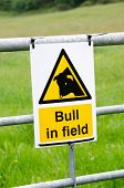 Warning bull in field sign