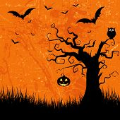 Grunge style Halloween background with bats, jack o lantern and owl