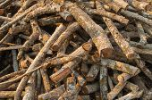 stock photo of circumcision  - Close up stow of firewood background picture - JPG