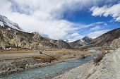 Mountain River With Hanging Bridge And Spring Fields With Horses On Them High In Himalayas In A Brig
