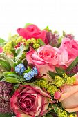 Closeup Of Pink Roses. Fresh Flowers