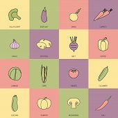 Vegetables icons flat line set