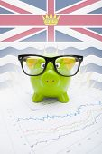Piggy Bank With Canadian Province Flag On Background - British Columbia