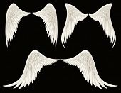 stock photo of cherubim  - Digital illustration of angel wings - JPG