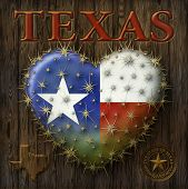 image of texas map  - Digital Painting of a heart shaped prickly pear cactus with the Texas flag map my own custom Seal - JPG