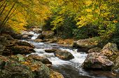 North Carolina Autumn Cullasaja River Scenic Landscape